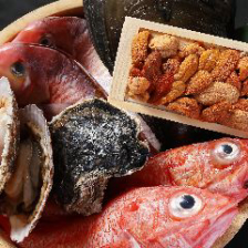 新鮮鮮魚を使用した宴会コース