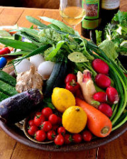 野菜好き集まれー!