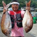 【全7品】【仕入状況による】釣り物天然魚のコース 8,500円(税抜)