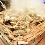 これは食べないと! 牡蠣のガンガン鉄板焼き!!