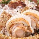 新鮮でぷりぷりの美味しい活帆立が食べられます!