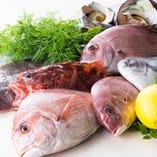 瀬戸内海の豊富な魚介類【岡山県】