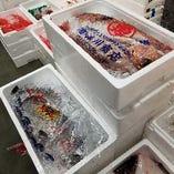 毎朝『豊洲市場』に料理長が赴き目利きする新鮮鮮魚