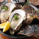 《新鮮》大粒牡蠣!【北海道・岩手他】