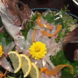 鮮魚姿造り【愛知県】
