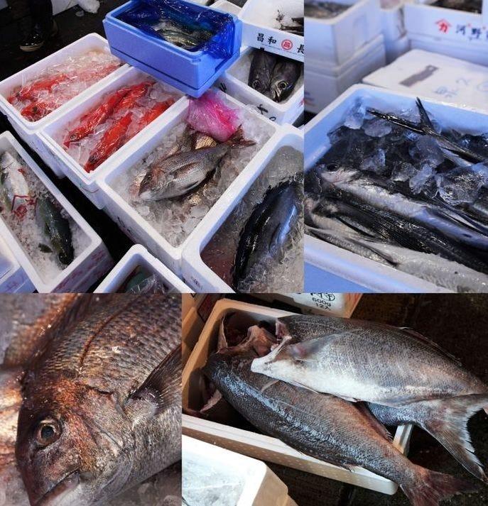 有機野菜・魚介は毎日直送