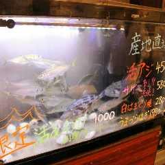 たぬき 川口店