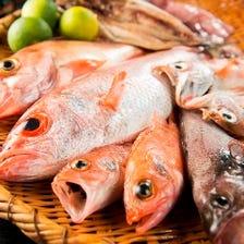希少な魚も低価格で!?