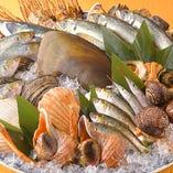 多彩な新鮮魚介を味わえるのは、寿司屋ならでは!