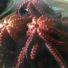 長島のタコ「蛸大王」