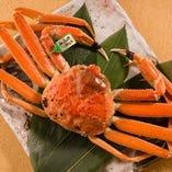 【鮮魚】 その季節に応じて仕入れる旬の鮮魚