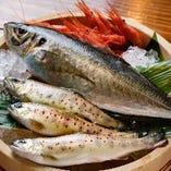 新鮮なお魚【全国各地から】