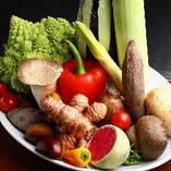 熊本阿蘇・新潟・飛騨等契約農家から有機・減農野菜を直送