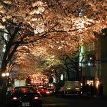 夜桜の見える個室完備