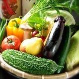 仕入れたばかりの野菜を使用した『野菜巻き串』【愛知県】