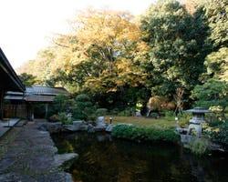 滝が流れる、四季折々姿を変える中庭
