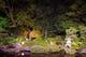 夜のライトアップ 季節になると蛍の鑑賞もできます