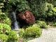 滝が流れる庭園を眺めてお食事