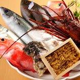 宮城直送の魚介や新鮮な上賀茂のお野菜を使用しています。