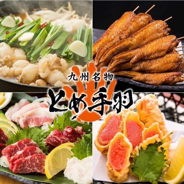 九州名物とめ手羽 長尾店