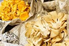 フランス産天然キノコ ジロール茸とプルロット茸のソテー