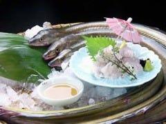 銘酒 魚の家