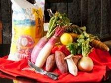 宮崎産の厳選された食材