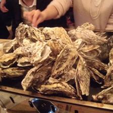 生&焼き牡蠣食べ放題!¥3,980(税抜)