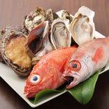 新鮮な魚介類を毎朝築地市場で仕入れています。