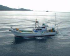 【今日のお魚を求め海へ】⇒