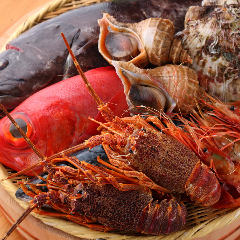 海鮮和食と純米酒 えんがわ 溝の口