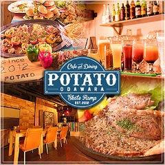 個室×肉バル POTATO(ポテト) 小田原店