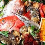 目利きの大将が毎日市場で仕入れる新鮮な魚【鹿児島県】