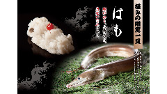 雛鮨 ラビワン池袋店