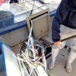 毎朝、漁港から漁師が魚を運んできます。だから新鮮です!