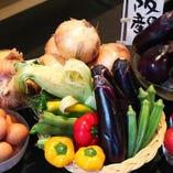 契約農家から届く新鮮な大阪の「お野菜さん」