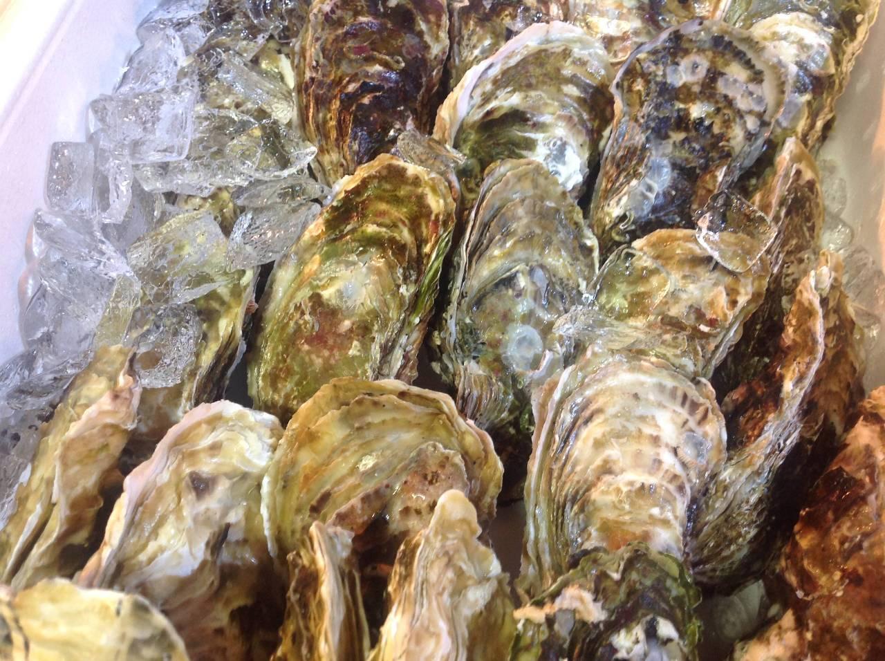 一年中生牡蠣オイスターが食べられるオイスターバースタイル