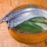 約1.6mの肉厚太刀魚をご提供