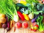 ◆◆地元川越産の旬のお野菜たちが新鮮で美味しい◆◆【埼玉県川越市】