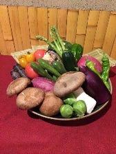 板長厳選、こだわりの新鮮野菜