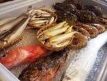 毎日毎日とれたての新鮮なお魚が店頭やカウンターに並びます。