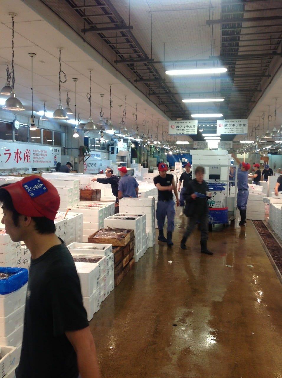 今日の魚を求めて朝の市場へ!