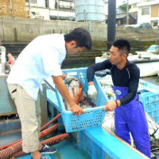 漁師からの直に仕入るルート