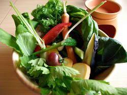 モアーク農園直送、有機野菜はこだわり野菜が毎日変わります。