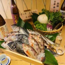 氷見の鮮魚と京野菜使用の逸品を堪能