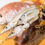魚介類は、粟島の漁港から漁師さん厳選の旬ものが届きます。