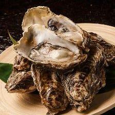 【独自ルートで仕入れ】仙鳳趾の牡蠣