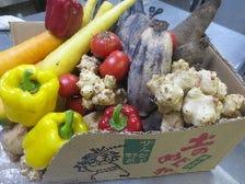 毎週届きます!熊本有機サムライ野菜
