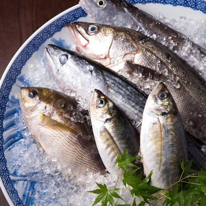 九州近海で獲れたての海の幸が満載