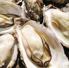 牡蠣 タコ居酒屋 明石